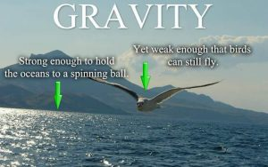 Magic Gravity on a Globe Earth